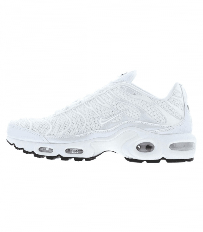 Zapatilla Nike Air Max Plus Premium